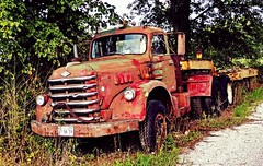 this jewel has lost it's luster...(HTT) (BillsExplorations) Tags: jewel luster diamondt truck truckthursday ruraldecay ruraldeterioration rust abandoned abandonedillinois fountaingreen forgotten discarded salvage ruralflight farmcrisis old vintage