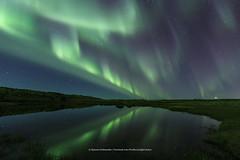 @ Seltjrn (Kjartan Gumundur) Tags: iceland sland auroraborealis northernlights norurljs zorzapolarna nordlys nightphotography nightscape nocturne ngc pond reflection canoneos5dmarkiv kjartangumundur arctic photoguide
