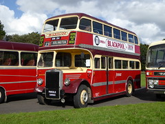 Barton KNN254 (RL Buses) Tags: showbus bus busrally preservedbus donington doningtonpark barton bartons