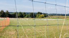 2016-09-22-001-MaMa - Wertach - A-Sd - 0020 - C00001sr - W1920 (mair_matthias_1969) Tags: bobingen bayern deutschland de lumix panasonic dmcg7 dmcg70 mft microfourthirds g7 g70 lumixg7 lumixg70 nophotoshop keineschmutzigentricks ohneschmutzigetricks nodirtytricks gvario14140f3556 outdoor landschaft landscape zaun fence