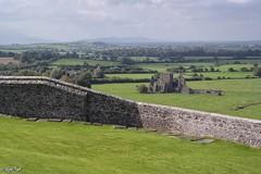 Hore Abbey (1272) (Lux) Tags: samsungnx2000 samsung nx2000 fogliluca lux76 nobrainstudio trip ontheroad wild ireland eire irlanda irish land green