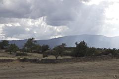 Campo del Castilla. (elojeador) Tags: campo rbol luz sol cereal pasto hierba mata matorral cerca tapia monte montaa sierra nube len elojeador
