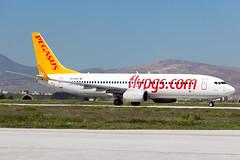 TC-AAY_Boeing737-800_Pegasus_KYA (Tony Osborne - Rotorfocus) Tags: boeing 737 737800 pegasus airlines turkey konya 2015