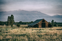 Barn near the Bitterroot Mountain range (michaelraleigh) Tags: 50mm landscape range highquality mountains trees vintage canon pinetrees sunrise summit sky morning serene f18 barn secluded montana infocus mountain bitterroot outdoors green canoneos5dmarkii gray field