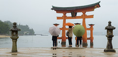 Color on gray (acase1968) Tags:  miyajima umbrellas nikon d600 nikkor 24120mm f4g kasa torii hiroshima japan stone lanterns women rain itsukushima shrine sea