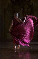 _MG_6291-le-18_04_2016_wat-thail-wattanaram-christophe-cochez-r-cop (christophe cochez) Tags: burmes burma birmanie birman myanmar thailand thailande maesot myawadyy monk bonze novice religion watthailwattanaram travel voyage bouddhisme buddhism portrait
