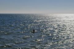 EL PESCADOR (Marianel1) Tags: blue light sea espaa naturaleza luz sol beach nature water azul landscape atardecer mar fisherman spain agua nikon shine playa highlights cadiz horizonte pescador reflejos brillos pescando d3000 marianel1