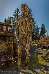 Driftwood Human, by Dan Klennert (KPortin) Tags: sculpture man driftwood sculpturepark danklennert