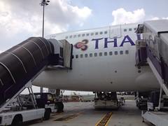 Thai Airways B747-400 HS-TGX (Beashel) Tags: airplane thailand airport bangkok aircraft aviation terminal thai boeing airways airlines bkk tg b747 thaiairways b747400 smoothassilk suvarnabhumi hstgx uploaded:by=flickrmobile flickriosapp:filter=nofilter stand115