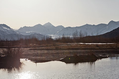 040413 - The Knik Glacier in the distance (Nathan A) Tags: morning mountains alaska river landscape outdoors spring glenn palmer glacier valley peaks range knik chugach floodplain oldglenn