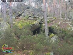 Covaleda.- (Historia de Covaleda) Tags: espaa spain fiesta paisaje douro pinos soria historia pinar tradicion duero covaleda