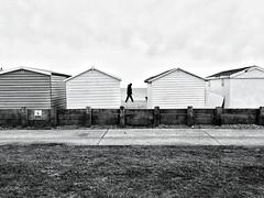 Walking Man (JonPunshon) Tags: street uk people blackandwhite bw man beach person coast brighton candid streetphotography huts beachhuts bnw iphone