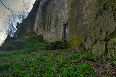 Drususfelsen Burg Bentheim 3 (Sunstonecruiser) Tags: flowers trees light shadow plants color green castle art nature rural germany landscape outdoors deutschland licht landscapes countryside photo spring bomen woods groen day view outdoor dramatic natuur surreal unfound berge april walls grn desolate bos landschaft schaduw wald schatten bloesem baum largeformat klimop burg mauer landschap kasteel efeu niedersachsen bentheim platteland voorjaar burcht muren deutscherwald burgbentheim waldlandschaft grafschaftbentheim fruhling obergrafschaft deutschelandschaft