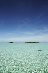 Green Pastures (stevec77) Tags: sea sky beach water lagoon cookislands aitutaki d90