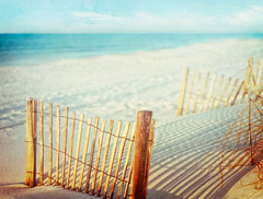 dreaming of summer (pixelmama) Tags: light sun texture beach fence pensacolabeach gulfislandsna