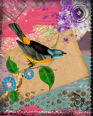 Free Blue Bird Collage Painting (Brooke LeAnne) Tags: flowers blue color bird art collage illustration digital butterfly painting drawing imagination inspiring animalart mixedmediaart colorfulart brookeleanne