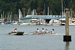 Rowing Lessons (dons projects) Tags: ocean canada slr sports water vancouver boats four harbor boat waves bc waterfront harbour candid olympus row canadian september seawall photowalk rowing stanleypark lesson yachts athlete boathouse seashore zuiko vancouverbc coalharbour lessons 2012 evolt e500 zd fourthirds 40150mm photoscape cans2s seeninvancouver kodakccd donsprojects