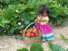 Leleti hat schon ein Körbchen voll ... (Kindergartenkinder) Tags: reki und dolls sommer annette hof erdbeeren 2013 himstedt schmücker kindergartenkinder leleti doppelleleti