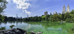 The Lake @ Central Park, NYC (daveybaby) Tags: thalake nyc newyorkcity newyork usa america centralpark garden park nature lake urban city landscape panorama