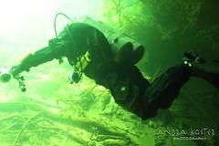 IMG_5952 (2) (SantaFeSandy) Tags: giant snapper turtle cave diving sinks lafayette blue springs state park sandrakosterphotography sandrakosterphotographycom sandykoster sandy sandra santafesandysandrakosterphotographycom sandrakoster algae green sink stevens 1 snake