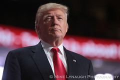 Donald Trump - 2016 Republican National Convention in Cleveland, OH #RNCinCLE (mikelynaugh) Tags: rncincle republicannationalconvention rnc republican trump convention cleveland americafirst makeamericagreatagain politics politicalrally ohio trump2016 donaldtrump
