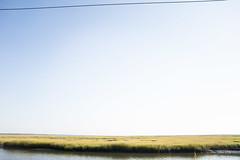 (gwoolston) Tags: grass marsh stoneharbor water jerseyshore