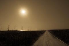 My path (petia.balabanova(tnx for +1.000.000 views)) Tags: sunrays path road malta sunset summer sea sun sky 1735mm nikond800 landscape travel