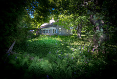 Garden cottage... (petec1113) Tags: garden cottage doorcounty wisconsin trees fence sonya7 backroads baileysharbor