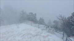 8 inch snow (cresthouse) Tags: sandia crest house new mexico 2 two miles high