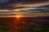 Basking in sunshine (lloydich) Tags: sunshine sunset south downs sussex sky clouds