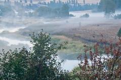 Palouse Morning (jamesdelbertanderson) Tags: palouse fall autumn mist washington nature pnw palouseriver whitmancounty countryside