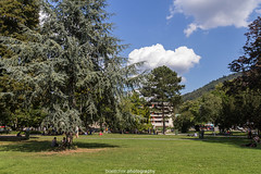 Summer at the Heidelberg City Park - August 2016 III (boettcher.photography) Tags: heidelberg germany deutschland badenwrttemberg august sommer summer 2016 sashahasha boettcherphotography park stadtpark citypark stadt city