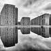 mirrored world II