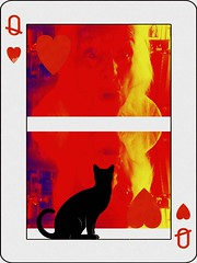 Who is Looking at Who? (soniaadammurray - OFF) Tags: digitalphotography manipulated experimental collage cat cards selfportrait abstract diptych