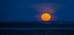 Moonrise (GPTPhotography) Tags: flikr