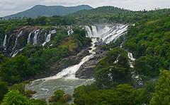 BHARACHUKKI (SIVANASAMUDRA) WATER FALLS (GOPAN G. NAIR [ GOPS Photography ]) Tags: gopsorg gops gopangnair gopan photography waterfalls kaveri bharachukki gaganachukki sivanasamudra water dispute karnataka india bangalore