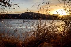 (Ein Blick zur Welt. Einblick in Welten.) Tags: lake chala kenya africa taveta tansania gras sunset positivity energy