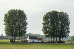 West-Zeeuws-Vlaanderen (wietsej) Tags: westzeeuwsvlaanderen landscape sony rx10m3 rx10iii rx10 iii wietsejongsma