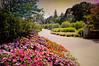 Walk Away From Love (floralgal) Tags: ryenewyork newyorklandscape westchestercountynewyork whitbycastleentrance flowers latesummerflowers whitbycastleryenewyork entrancegate entrancegatewhitbycastle