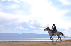 Song Kl lake, Kyrgyzstan (Thomas Depenbusch) Tags: asia asien central zentrakasien zentral kirgistan kirgisistan kyrgyzstan pferd horse lake see song kul kl kl geotagged gps thomas depenbusch