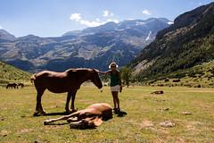 Tamer (Daniel Moreira) Tags: llanos de la larri valle pineta horses cavalos tamer domadora mountains montanhas trees rvores bielsa spain espaa espanha pirineus pirineos pyrenees pyrnes sky cu