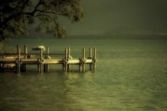 la lumiere du soir sur le lac  (evening light on the lake) (l'imagerie potique) Tags: limageriepotique poeticimagery lacdannecy colorefex tranquille peaceful