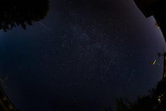 _DSC5500 (albertoric75) Tags: cielo stella cadente colore italy valdisusa