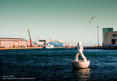 thinkig about flying (-REcallable-Memories-of-ET-) Tags: 2016 barcelona catalunya espana esze eszetamás hungary katalónia nikon sommer spain spanyolország summer tamas d5200 nyár love bird seagull happiness joy water sea see art statue man port hafen blue filter