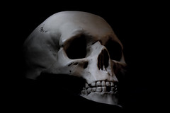 Teschio - Skull in the dark (Nicola Franzoso Naio) Tags: 550d fantasy light black dark canon lightpanting canon60mmf28 canon550d skull teschio art