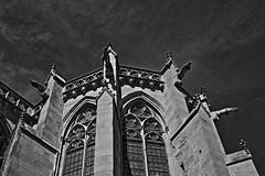 IMG_7540hdr (Fencejo) Tags: bw blackandwhite art hdr carcassonne tamron175028 canon400d
