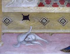 Salimbeni - Detail dog (petrus.agricola) Tags: lorenzo jacopo salimbeni scenes life saint john baptist urbino marche italy oratorio san giovanni battista