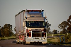Levett (quarterdeck888) Tags: trucks transport semi class8 overtheroad lorry heavyhaulage cartage haulage bigrig jerilderietrucks jerilderietruckphotos nikon d7100 frosty flickr quarterdeck quarterdeckphotos roadtransport highwaytrucks australiantransport australiantrucks aussietrucks heavyvehicle express expressfreight logistics freightmanagement outbacktrucks truckies levett freightliner argosy bdouble tautliner