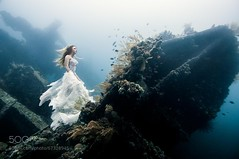 Deliverance (DRoofing163) Tags: water bali white wedding surreal fish dress serene underwater diver shipwreck hopeful supernatural freediver free dive ventureout
