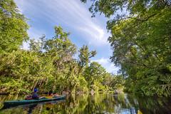 Kayak, Wekiwa Springs State Park (jeffk42) Tags: river orlando kayak florida kayaking wekivasprings
